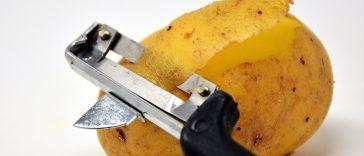 Obierki z ziemniakow - zastosowanie